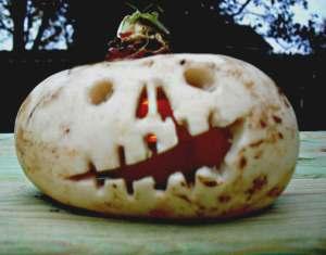 Halloween Turnip